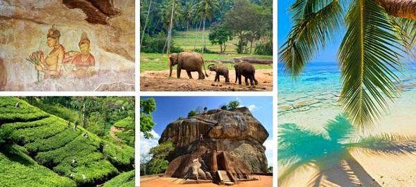 Mete viaggio di nozze low cost: Sri Lanka