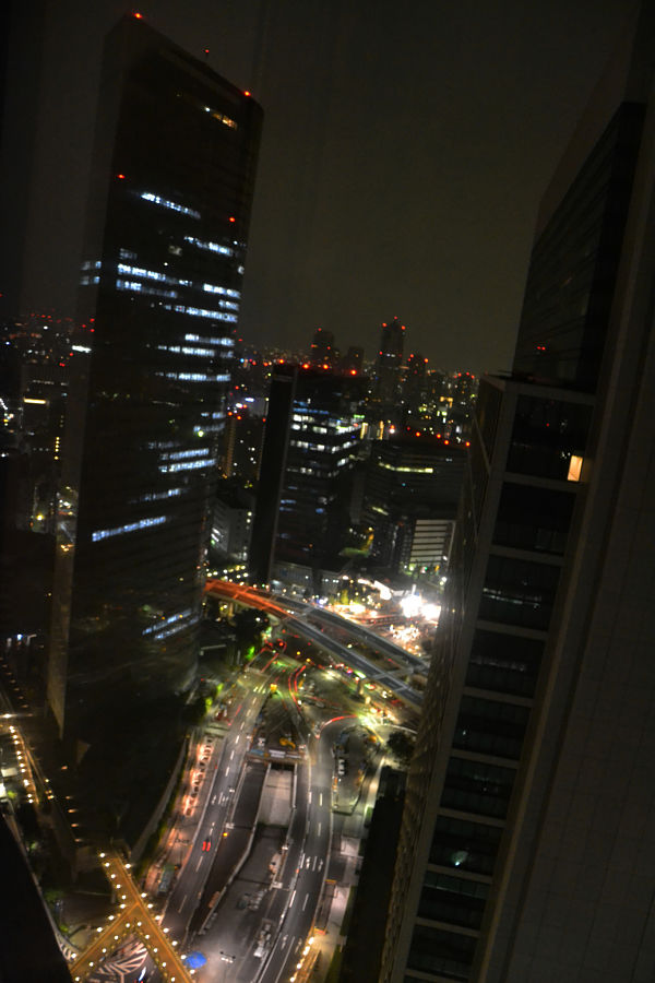 vista dal Park Hotel Tokyo