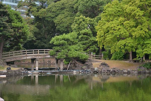 Giardini di Hama-rikyu di Tokyo