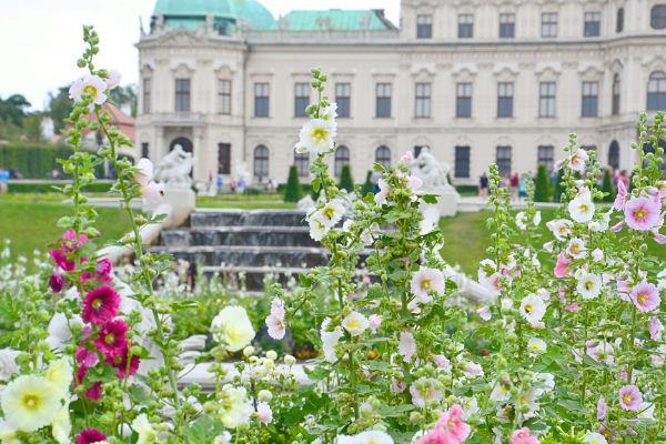 fiori Belvedere superiore a Vienna
