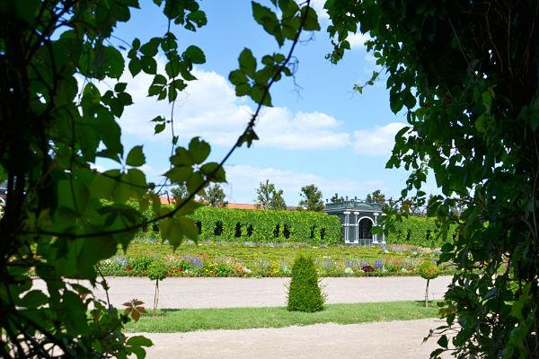giardino botanico Castello di Schönbrunn Vienna