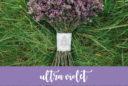 ultra violet nozze
