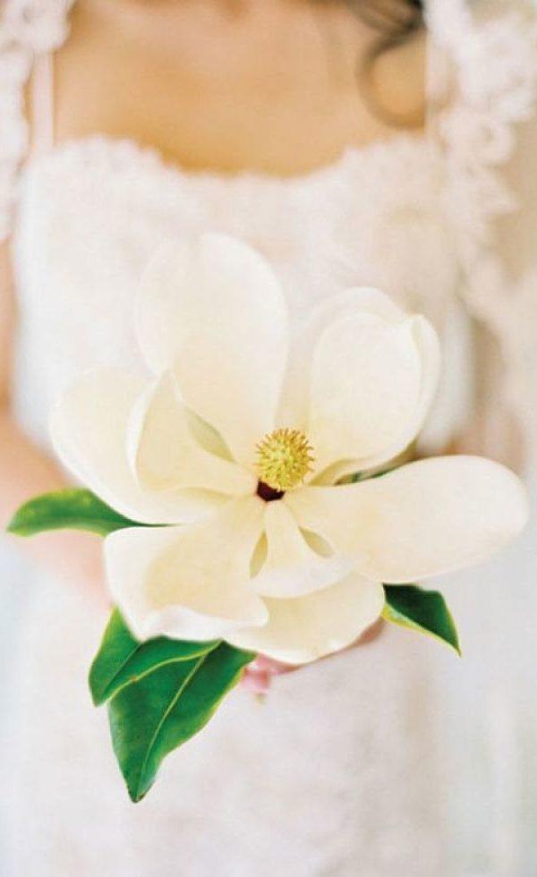 bouquet Glamelia con magnolia